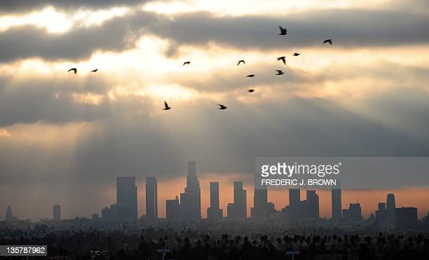 Birds fly across the sky at daybreak over the downtown Los Angeles skyline on December 14 2011 According to the state's Air Resources Board earlier...