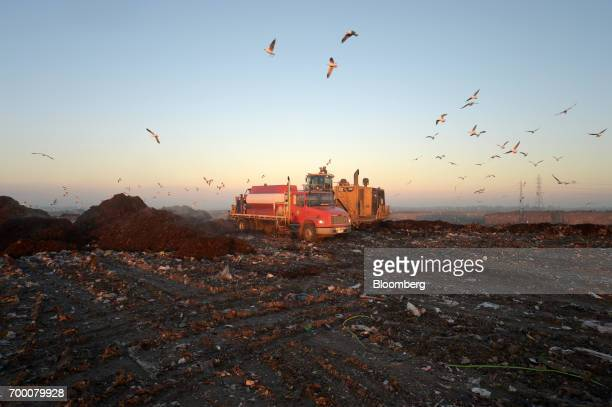 Birds fly over a landfill cell at the Melbourne Regional Landfill site operated by Cleanaway Waste Management Ltd in Ravenhall Victoria Australia on...