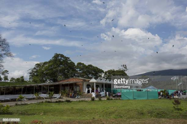 Birds fly over La Ascension Normandia cemetery after landslides in Mocoa Putumayo Colombia on Monday April 3 2017 Torrential rains caused water mud...