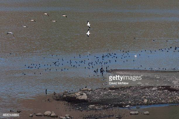 Birds fly over the low waters of Lake Success as rain totals remain insufficient to break the worsening drought on February 11 2015 near East...