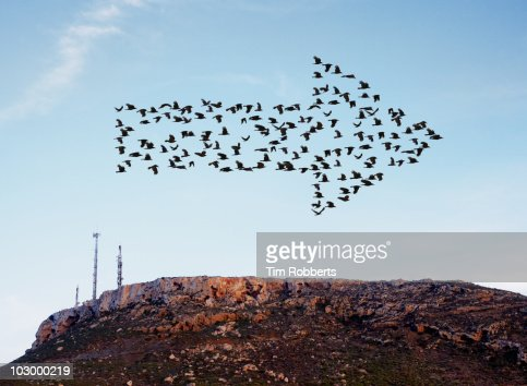 Birds flying in arrow formation above aerials.