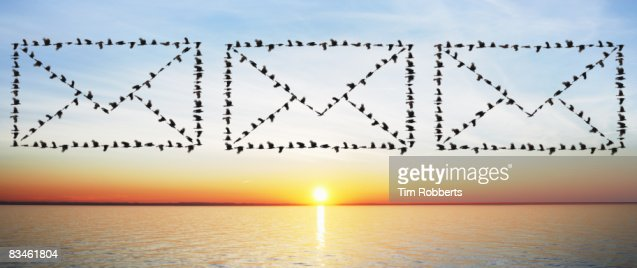 Birds flying in email envelope formations : Stockfoto