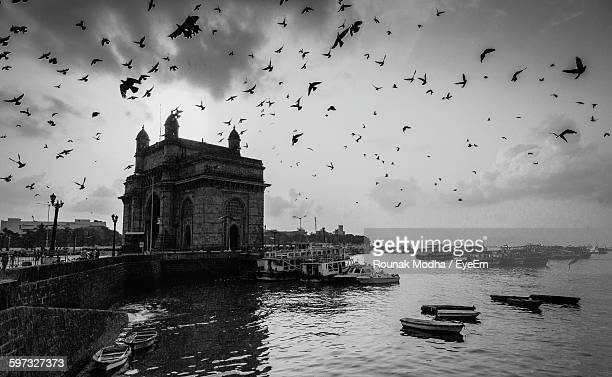 Birds Flying Over Gateway Of India And Boats On Sea