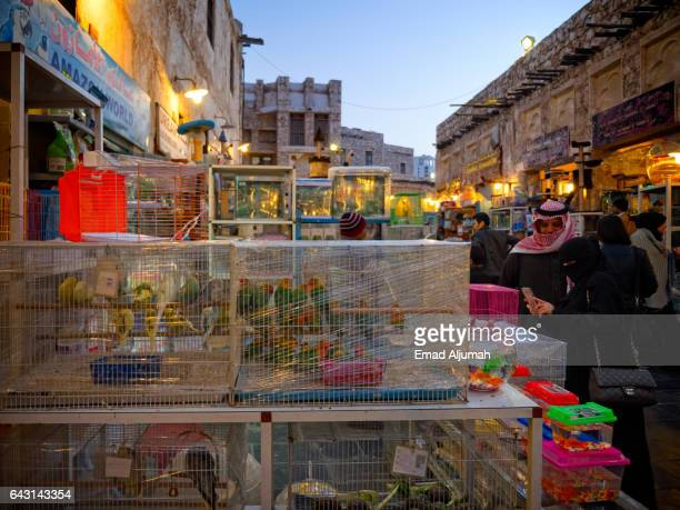 Birds in cages at the birds market in Souq Waqif, Doha, Qatar - February 3, 2017