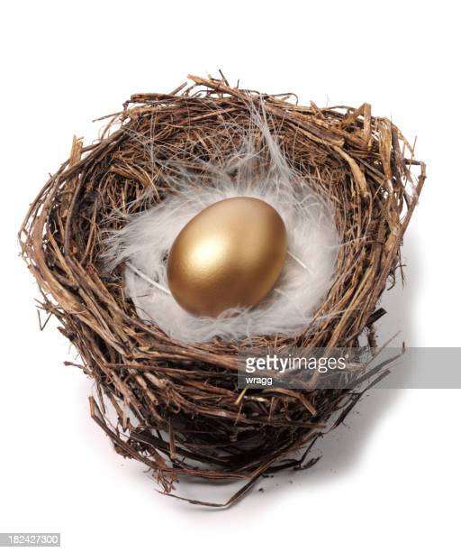 Bird's Nest and Golden Egg