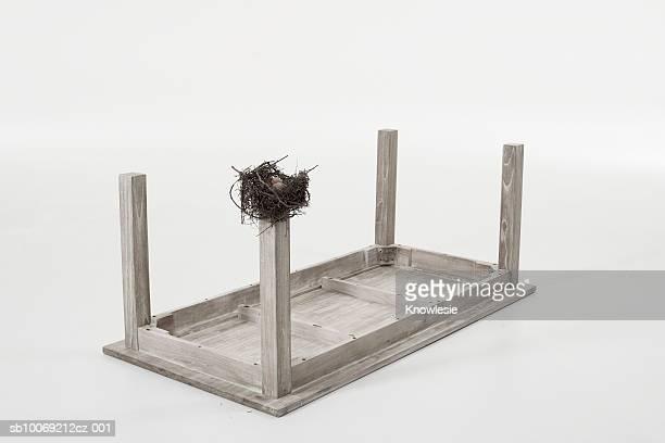 Bird's nest on leg of table set upside down against white background