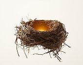 Birds nest with glow from inside.