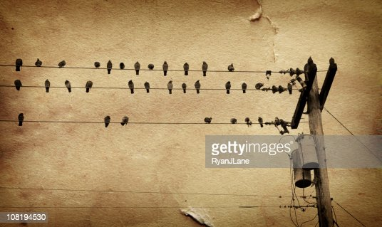 Birds on Telephone Line Overlayed with Grunge Brown Paper