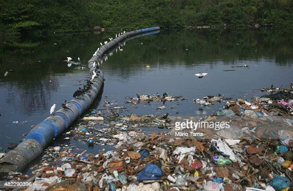Birds sit on a barrier set up in an attempt to block garbage from flowing downstream along the polluted Cunha canal which flows into the notoriously...