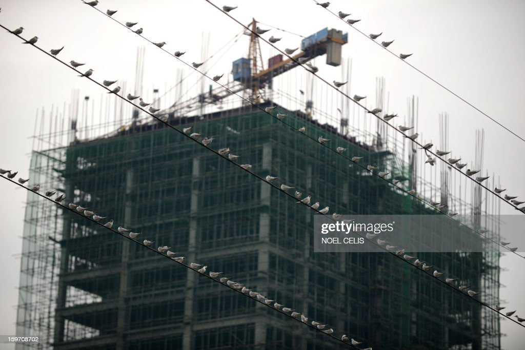 Birds sit perched on electrical wires in front of a construction project near the Pasig River in Manila on January 19, 2013. AFP PHOTO / NOEL CELIS