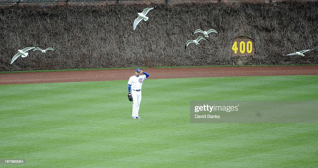 Birds soar above <a gi-track='captionPersonalityLinkClicked' href=/galleries/search?phrase=David+DeJesus&family=editorial&specificpeople=206765 ng-click='$event.stopPropagation()'>David DeJesus</a> #9 of the Chicago Cubs in a game against the Cincinnati Reds during the seventh inning on May 3, 2013 at Wrigley Field in Chicago, Illinois. The Reds defeated the Cubs 6-5.