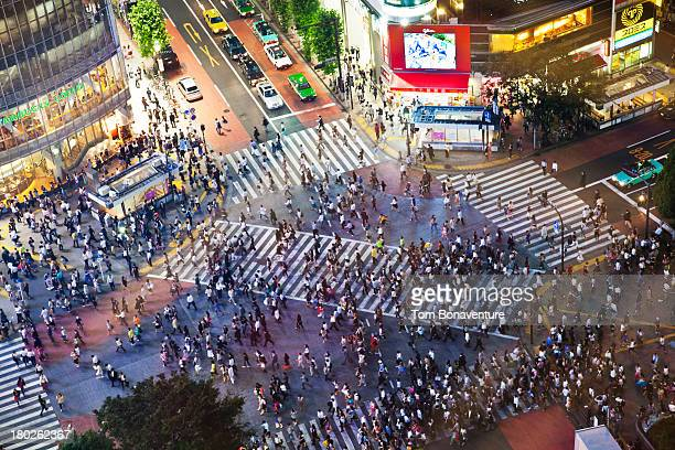 Birds-eye view of the infamous Shibuya Crossing