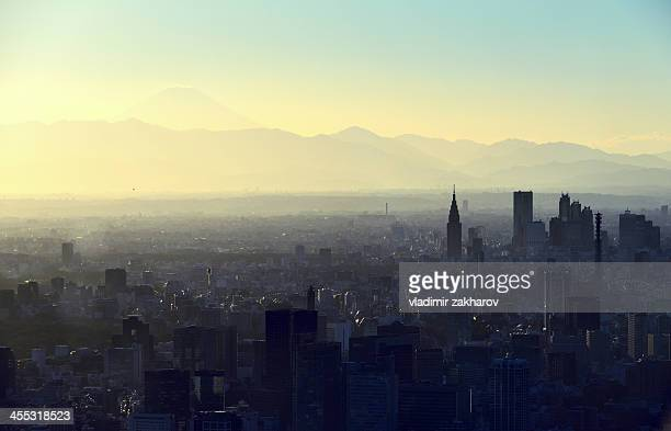 Bird's-eye view of Tokyo at sunset