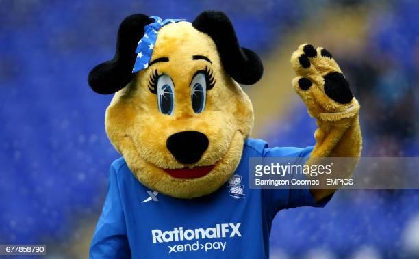 Birmingham City mascot Belle Brummie
