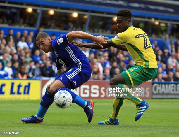 Birmingham City's Che Adams and Norwich City's Alex Tettey battle for the ball