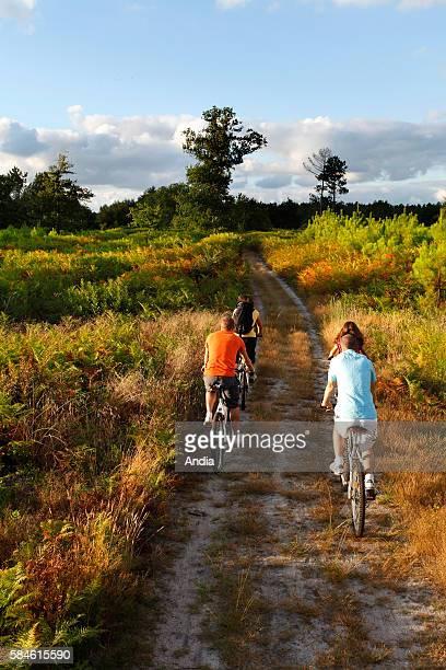 Family riding mountain bikes on country lanes