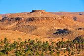 Biskra, Algeria: mesa above an oasis in the Sahara desert - photo by M.Torres