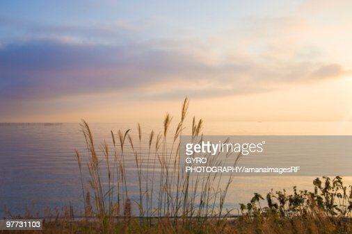 Biwa Lake. Otsu, Shiga Prefecture, Japan : Stock Photo