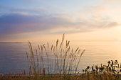 Biwa Lake. Otsu, Shiga Prefecture, Japan