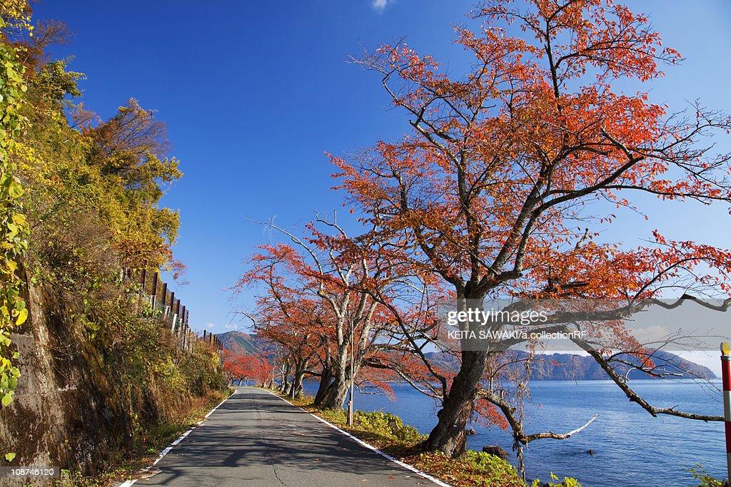 Biwa lakeside Kaizu Osaki