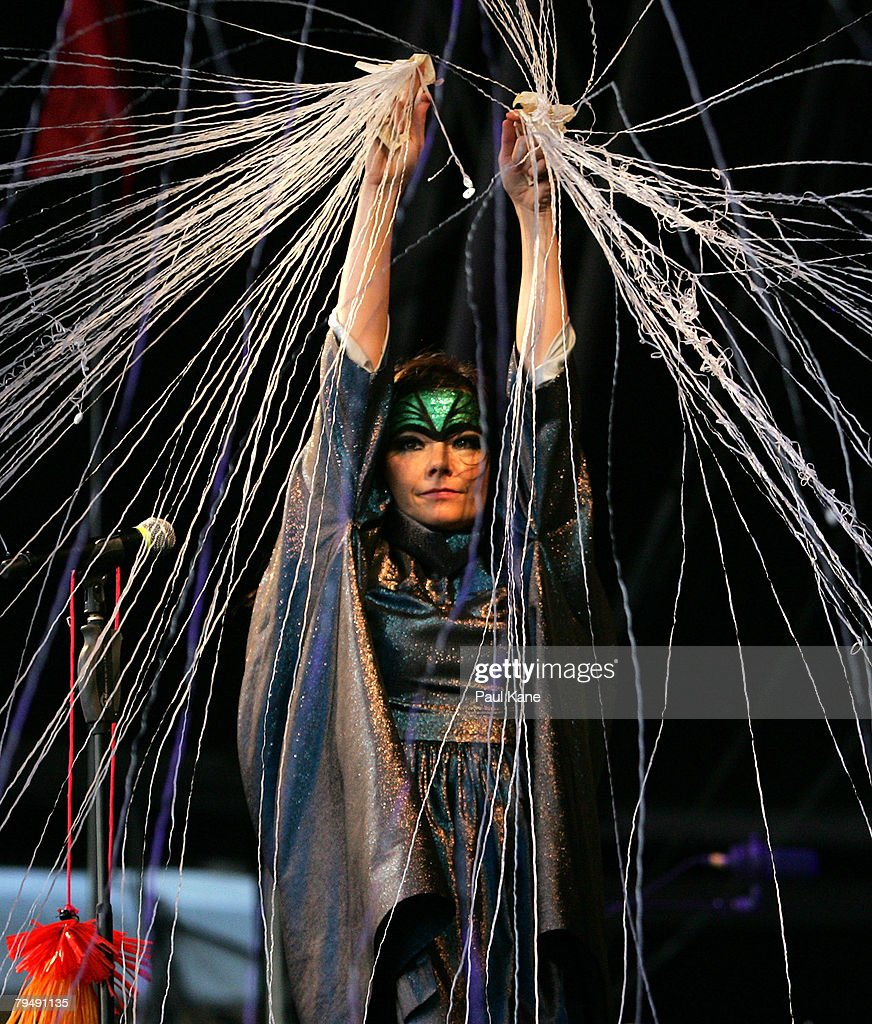 Bjork performs on stage during the 2008 Big Day Out at the Claremont Showgrounds on February 3, 2008 in Perth, Australia.