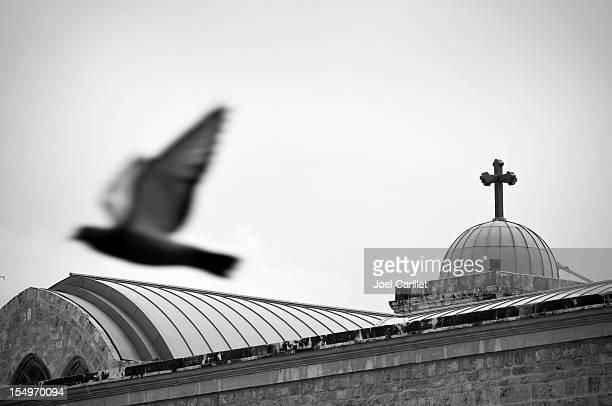 Pigeon flying past cross of St. George Orthodox Cathedral Beirut