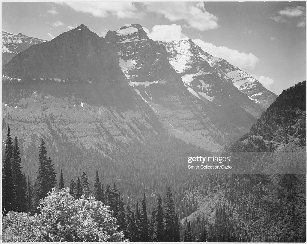 A black and white photograph of a tree covered valley with a snow covered mountain that has several peaks in the background in Glacier National Park...
