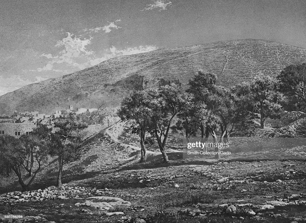 Black and white photograph with rocks and trees in the foreground hills and ancient settlement in the background captioned 'Naplouse Mont Garizim'...