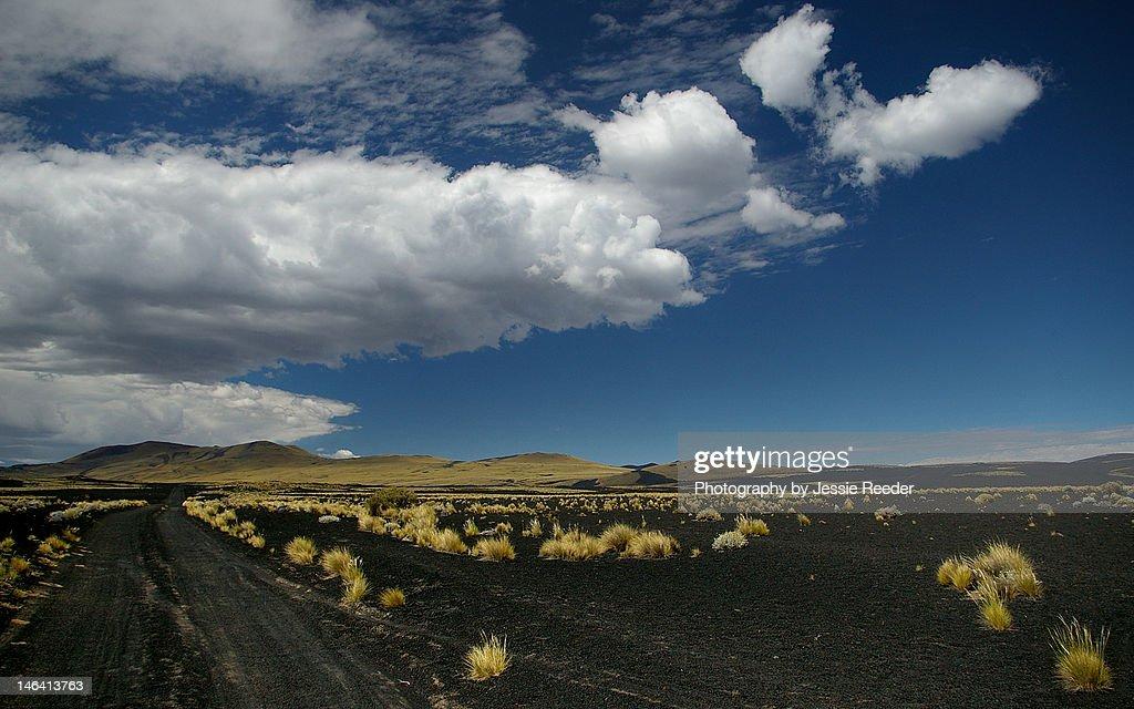 Black ash fields of Payunia : Stock Photo