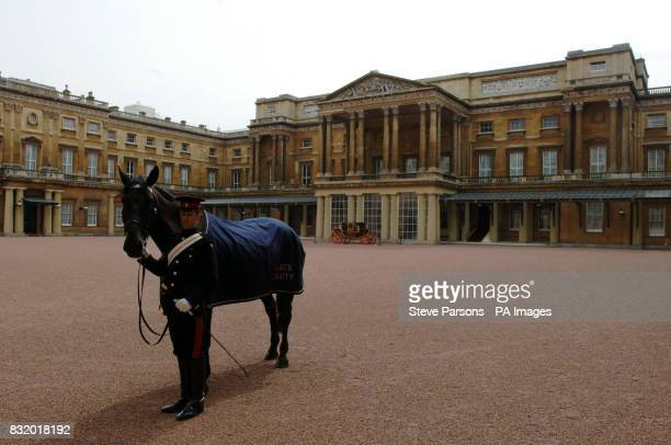 Black Beauty stands on display in the Quadrangle at Buckingham Palace as the Queen hosts a special garden party for two thousand excited children to...