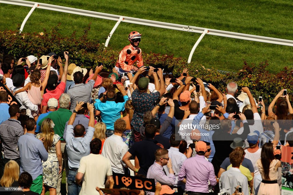 Black Caviar heads out for the start of race 7 the Black Caviar Lightning Stakes during Lightning Stakes Day at Flemington Racecourse on February 16, 2013 in Melbourne, Australia.