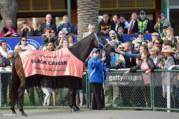 Black Caviar who was retired from racing during the week walks around the track with her regular strapper Donna Fisher for her final farewell from...