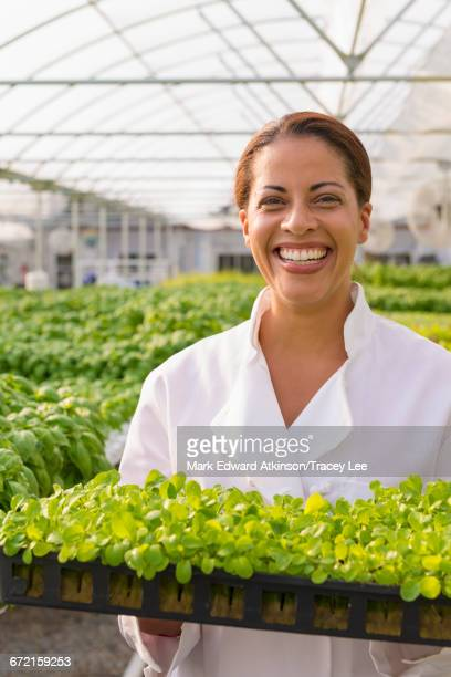 Black chef standing in greenhouse holding tray of plants