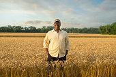Black farmer standing in wheat field