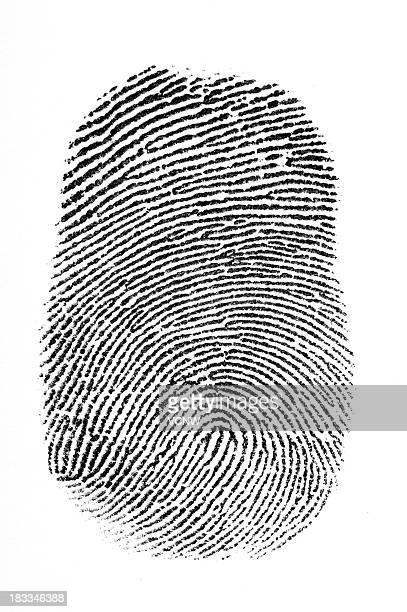 Black fingerprint with a white background