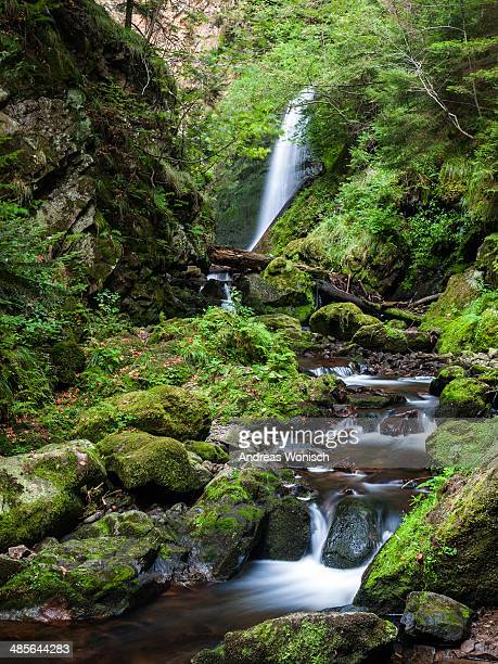 Black Forest Gorge Waterfall