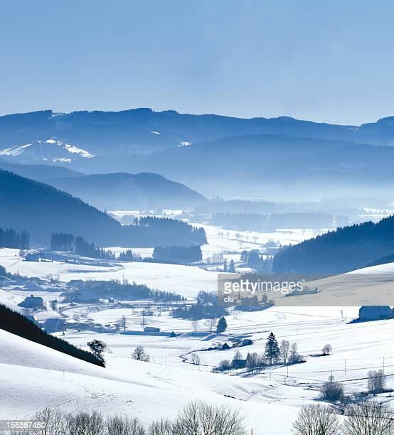Black forest winter impression