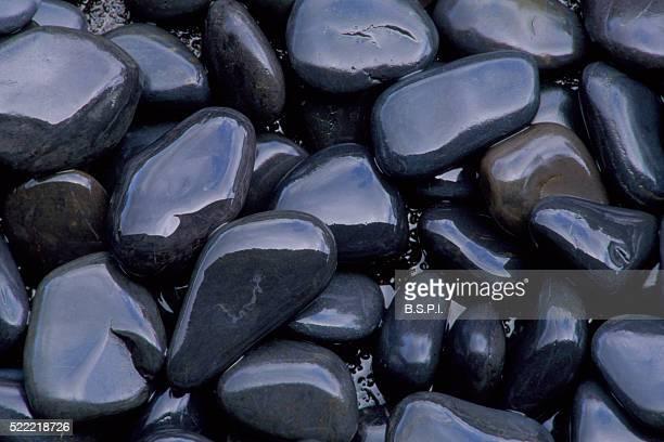 Black Garden Pebbles After Rain