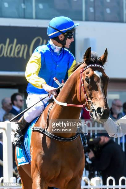 Black Heart Bart ridden by Brad Rawiller heads to the barrier before the italktravel Futurity Stakes at Caulfield Racecourse on February 25 2017 in...