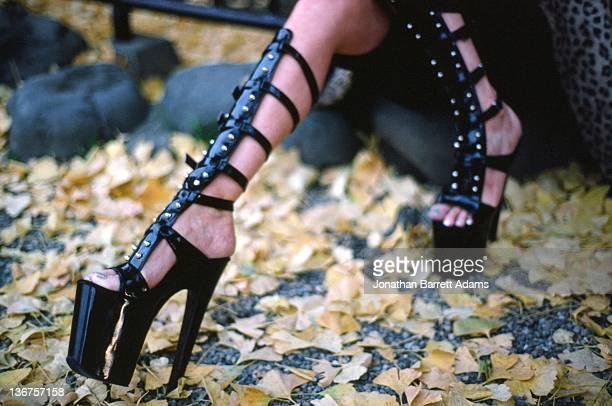 Black heels in autumn leaves