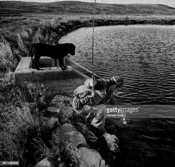 Black Labrador Retriever 'Charlie' Was Perplexed By Trout On Duck Hunt Bob Saile lands rainbow from North Park pond dog at first tried to 'retrieve'...