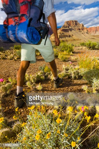 Black man hiking in canyon area : Stock Photo