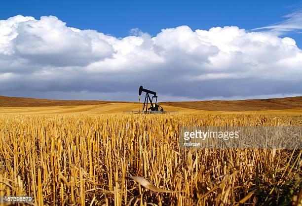 Nero olio Pumpjack in campo-tempesta in arrivo