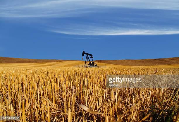 Nero e olio Pumpjack in campo-orizzontale nuvole
