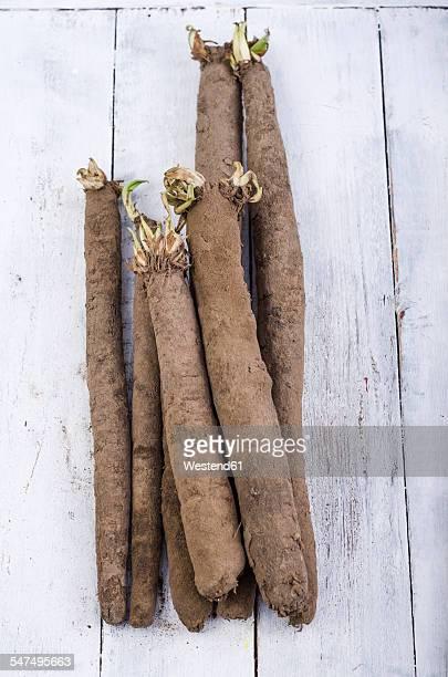 Black salsifies on wood