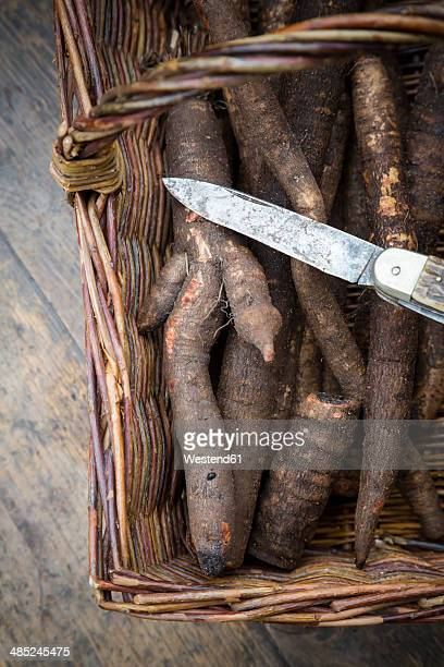 Black salsifies (Scorzonera hispanica) with kitchen knife in basket on wooden table