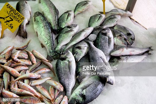 Black seabream for sale at Sinop of Turkey