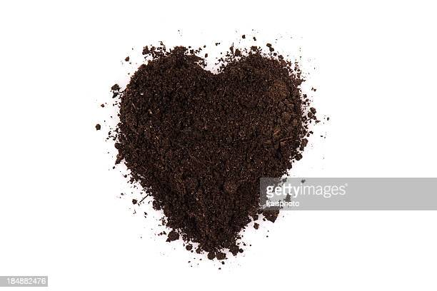Black soil heart