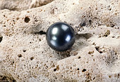Large black Tahitian pearl on white coral.