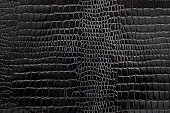 Black textured snakeskin paper photographed close-up revealing details of the paper as well as the pattern